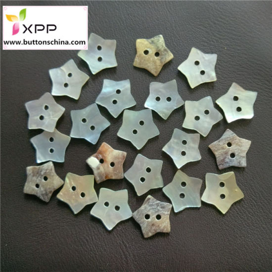 2h Star Shape Shell Button