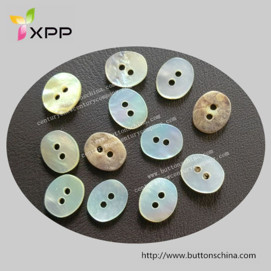 2h Square Natural Button Shell Button